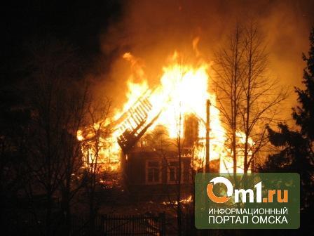 Под Омском в садовом товариществе «Искра» сгорел дачник