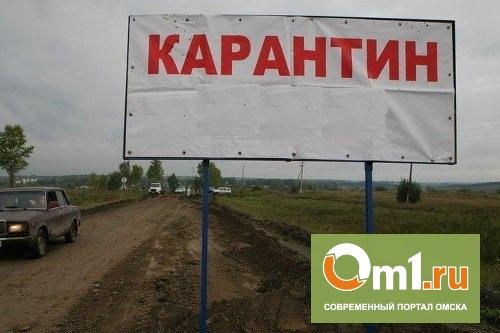 На картофельных полях под Омском ввели карантин