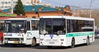 В Омске водителя автобуса будут судить за смерть девушки на пешеходном переходе