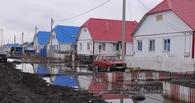 В Омской области талыми водами подтопило 36 домов