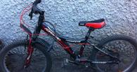 В Омском районе полицейские поймали серийных похитителей велосипедов