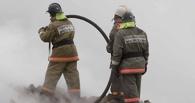 В Омской области на пожаре погибла мать с восьмилетним ребенком