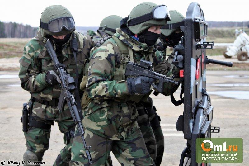 Порошенко пообещал, что армия Украины в одностороннем порядке прекратит огонь