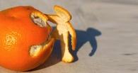 Фирма из Омска требовала у полиции Брянска миллион за апельсины