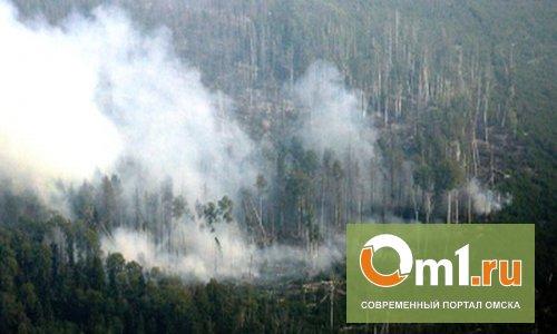 Омские спасатели готовятся к лесным пожарам