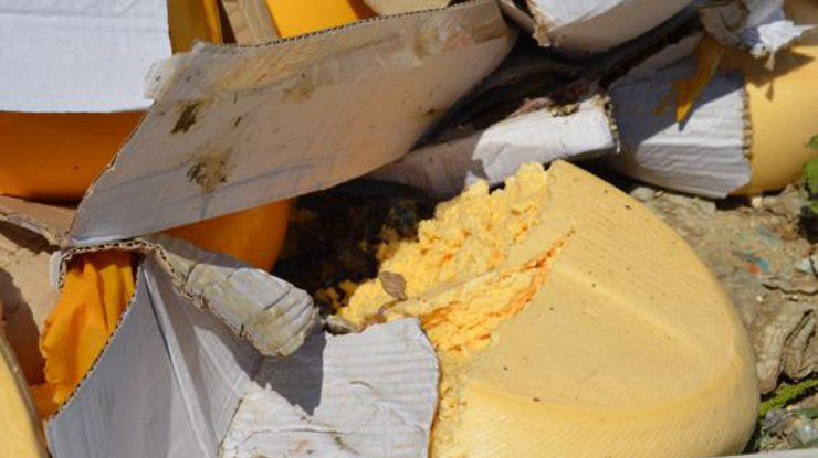 В Омске нашли санкционные сыры из Польши и Австрии