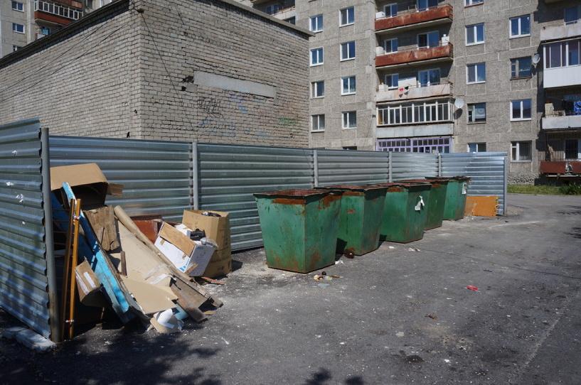 В Омске в мусорном контейнере нашли расчлененное тело