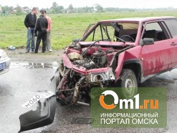 На трассе под Кормиловкой в результате ДТП погибли двое человек