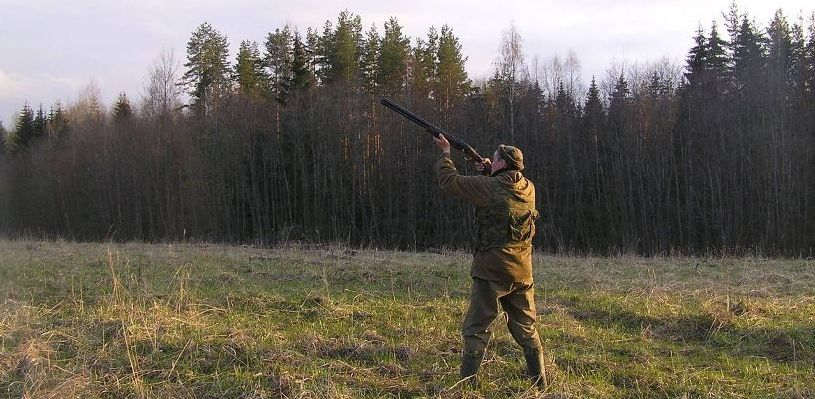 Весенний сезон охоты в Омской области начнется 30 апреля