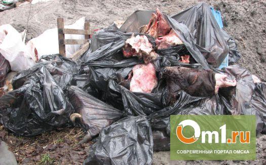 В Омске ликвидировали опасное «кладбище» домашних животных