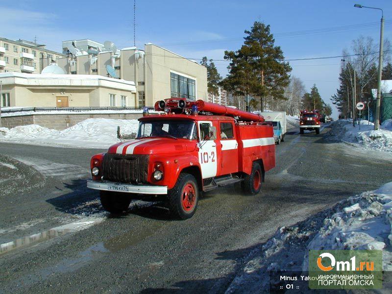 В Омской области после Нового года пьяный мужчина пытался сжечь дом