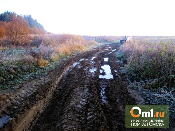 За плохое состояние дорог попало и главам восьми сел Омской области