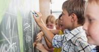 Опрос омичей: школьные знания никак не пригодились
