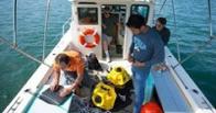 Американские ученые протестировали подводный Wi-Fi