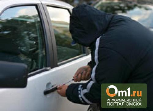 В Омске на парковке у «Меги» поймали автомобильного воришку