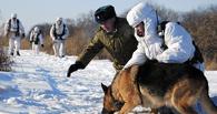 Депортированные из России граждане Узбекистана пешком дошли до Омска