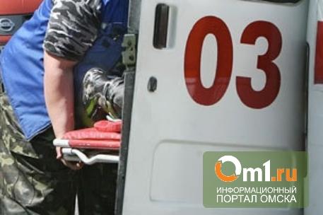 В Омской области в аварии погибла 3-летняя девочка