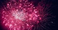 Жители Земли встретили новый год!