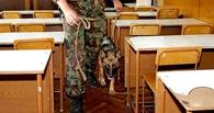 В Омске будут судить подростка, «заминировавшего» родной интернат