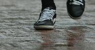 Из детского дома в Омской области пропал 13-летний мальчик