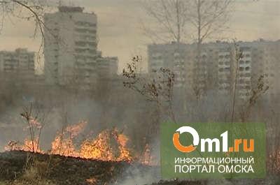 В Омске из-за потепления массово горит трава и мусор