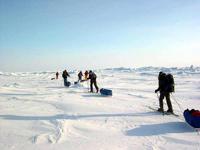 В России появился новый праздник — День полярника