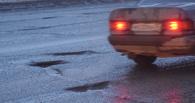 Мизулина летит в Омск проверить обещанный ремонт дорог