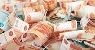 Пастух из Омской области хотел взять кредит в 1,5 млн рублей и лишился сбережений