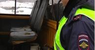 Омская полиция прошерстила маршрутчиков