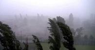 Штормовое предупреждение объявлено в Омской области