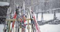 В омской «Птичьей гавани» пройдут лыжные гонки