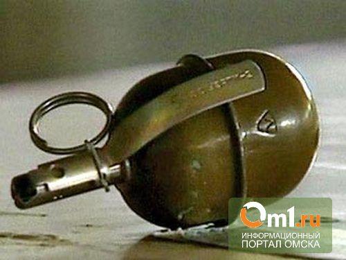 Омская дачница ждала 10 дней, пока с ее участка уберут гранату