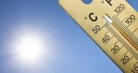 Побили рекорд: сегодня в Омске самый жаркий день с начала лета