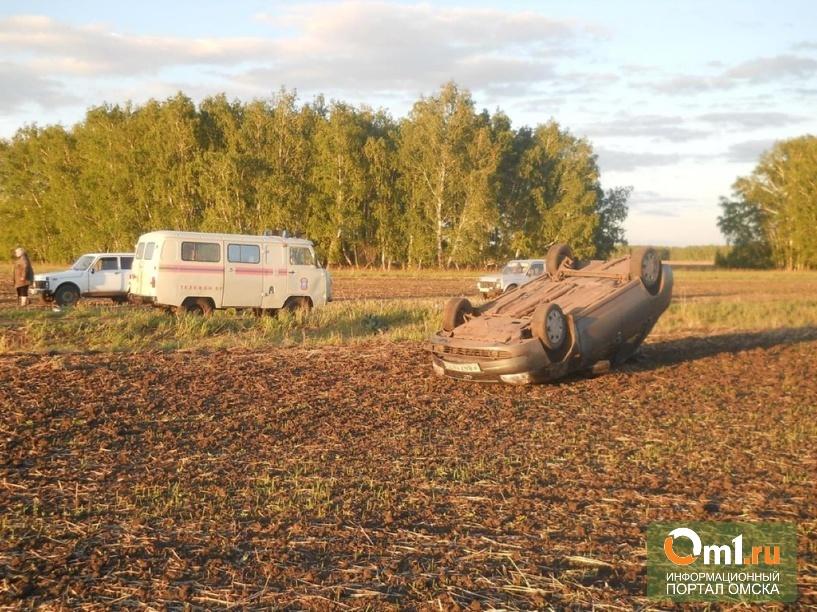 В Омской области погиб водитель Лады Приоры