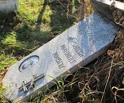 В Омской области на Родительский день вандалы осквернили 14 могил