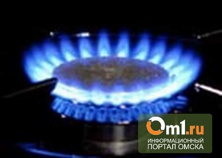 Омскую газовую фирму оштрафовали на 100 тысяч за «некошерные» расценки