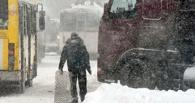 Синоптики прогнозируют усиление ветра в Омске