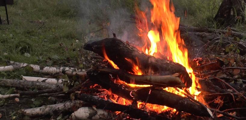 Омичам запретили отдыхать в лесах на майских праздниках