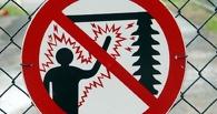 8 марта омича убило током в электрощитовой