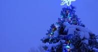 Мэрия проведет для маленьких омичей 41 новогоднюю ёлку