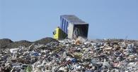 Свалку в Надеждино исключили из схемы размещения отходов в Омской области
