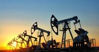 Цена нефти поднялась выше $61 за баррель впервые с декабря 2014 года