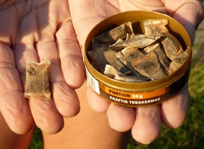 В России законодательно запретят сосательный табак