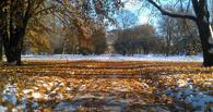 В начале октября в Омской области может пойти снег