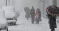 В мэрии предупредили, что сильная метель в Омске продлится весь день