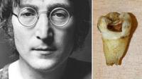 Стоматолог из Канады собирается клонировать Джона Леннона