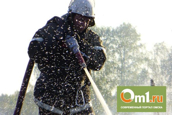 В Омской области пожар на ферме повредил оборудование на миллион рублей