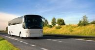Автобус Омск-Сургут под городом сбил пожилого велосипедиста