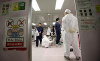 Виновницей аварии на Фукусиме могла стать крыса