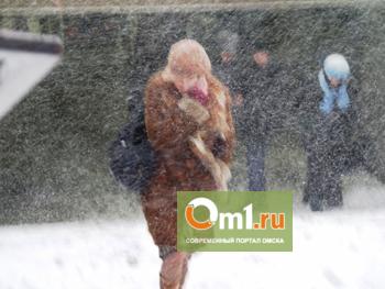 Омичка, пропавшая в метель 8 марта, могла погибнуть из-за халатности силовиков